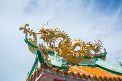 Dragon on roof. Chinese dragon on temple roof royalty free stock photography