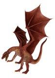 Dragon rouge de attaque subit Photographie stock libre de droits