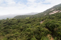 Dragon`s Back hiking trail in Hong Kong Royalty Free Stock Image