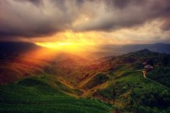 Dragon`s Backbone Rice Terraces royalty free stock images