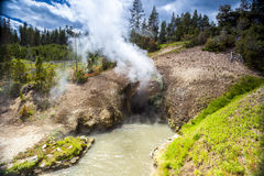 Dragon's Mouth, Mud Volcano Pool, Yellowstone National Park Royalty Free Stock Photos