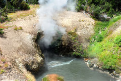 Dragon's Mouth Spring in Yellowstone Stock Photography