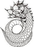 Dragon sans jambes oriental Photos libres de droits