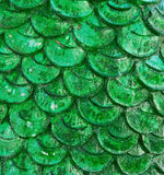 Dragon scales Royalty Free Stock Photos