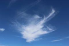 Dragon Shaped Cloud imagens de stock royalty free