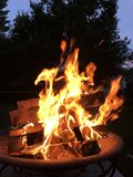 Dragon Shaped Flame fotografia de stock