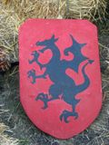 Dragon shield Stock Photography
