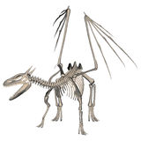 Dragon Skeleton Royaltyfria Bilder