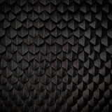 Dragon Skin Fotografia Stock