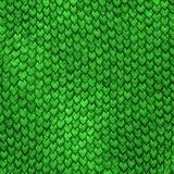 Dragon skin green scales background Stock Images