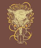 Dragon Skull ornemental Image stock