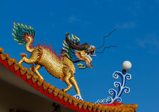 Dragon and sky Royalty Free Stock Photo
