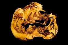 Dragon, snake and shaman Stock Photography
