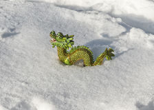 Dragon in the snow Stock Images