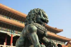 Dragon Son fotografia de stock