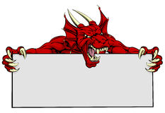 Dragon Sports Mascot Sign rouge Photos stock
