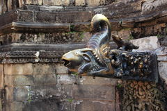Dragon spring at Kathmandu. Stock Photography