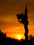 Dragon statue silhouetted (Warm tone color) Royalty Free Stock Photos