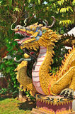 Dragon statue at temple wall Stock Image