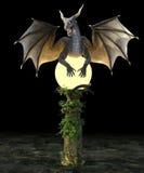 Dragon stella Royalty Free Stock Image