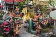Dragon tegallalang. Ricefield bali indonesia Stock Images