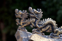Dragon in the temple. Made by Copper Stock Images