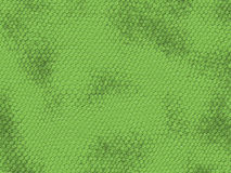 Dragon texture. Green contrasts dragon  texture near Royalty Free Stock Images