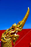 Dragon  in thailand incision of the buddha gold  temple Stock Images