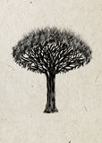 Dragon-tree. Black silhouette tree on rice paper. Royalty Free Stock Image