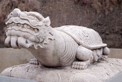Dragon Turtle. On the ground Royalty Free Stock Images