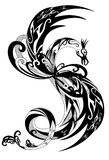 Dragon vector. Beautiful black and white dragon illustration Stock Photo