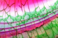 Dragon Vein Agate Pattern verde rosa Fotografia Stock