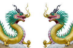 Dragon on white background Royalty Free Stock Image