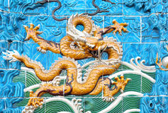 Dragon yellow Stock Photography