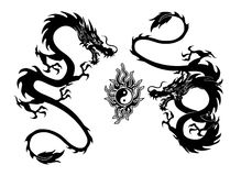 Dragon and yinyang tattoo. Illustration of a two dragon and yinyang symbol tattoo  on white background Stock Image