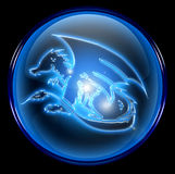 Dragon Zodiac icon Stock Images