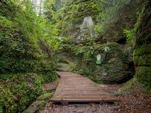 Dragoncanyon en el bosque de Thuringian Fotografía de archivo libre de regalías