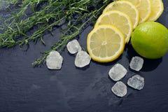 Dragoncello con il limone, lo zucchero e la limetta Immagine Stock