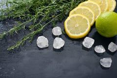 Dragoncello con il limone, lo zucchero e la limetta Fotografia Stock Libera da Diritti