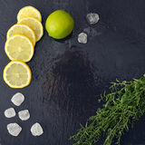 Dragoncello con il limone, lo zucchero e la limetta Fotografia Stock