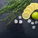 Dragoncello con il limone, lo zucchero e la limetta Immagini Stock