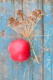 Dragoncello e mela della decorazione Fotografia Stock