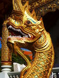 Dragone in Chiang Mai Fotografia Stock