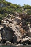 Dragonera Island Stock Photos