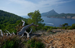 Dragonera view Stock Image