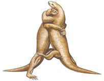 Dragones de Komodo stock de ilustración