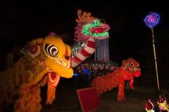 Dragones y león de la iluminación en Año Nuevo chino Fotografía de archivo