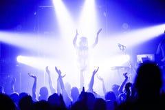 Dragonette de concert Photos stock