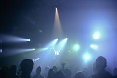 Dragonette de concert Photo stock