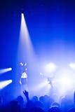 Dragonette de concert Photos libres de droits